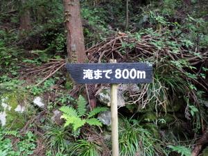 DSC_3801.jpg